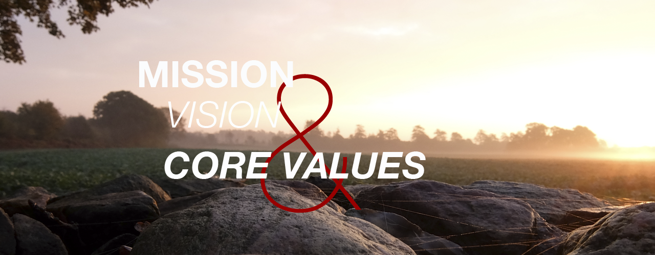 Mission & Vision & Core Values